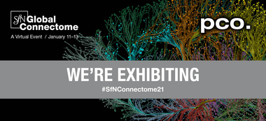 SfN Global Connectome Banner